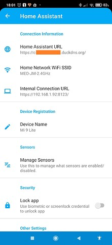 Screenshot_2021-04-07-18-01-13-637_io.homeassistant.companion.android