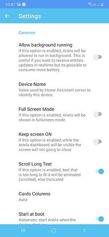 Screenshot_20200211-104102_Ariela