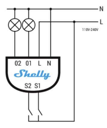 shelly2